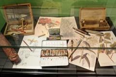 """Détail expo """"chasseurs de plantes"""" - matériel de dessin et planches botaniques"""