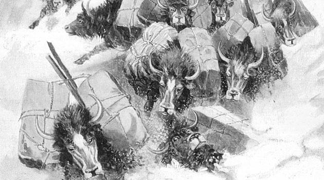 Gabriel Bonvalot, A travers le Tibet inconnu  (1889-1890)